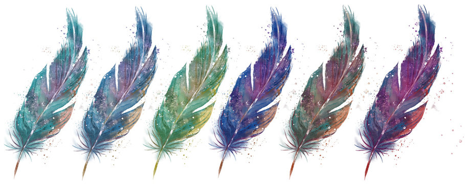 feather set in different colors< watercolor effect