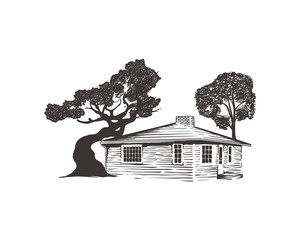 Old House with the Tree on the SIde Illustration Hand Drawing Logo Vector