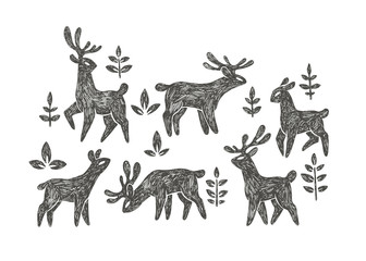 Vector hand drawn illustration with deer herd in forest isolated on white background. Natural pattern with cute animals and floral elements in ethnic ornamental style for print.