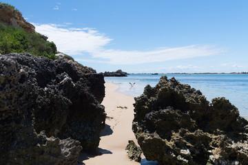 Möwe im Landeanflug am Strand zwischen zwei Felsen