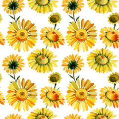 Wildflower yellow chamomile flower pattern in a watercolor style. Full name of the plant: yellow chamomile. Aquarelle wild flower for background, texture, wrapper pattern, frame or border.