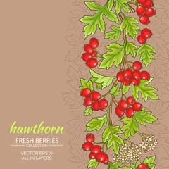 hawthorn vector background
