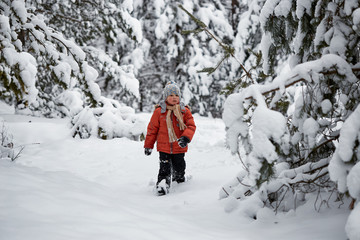 winter fun. the boy alone wanders through the winter snowy forest.