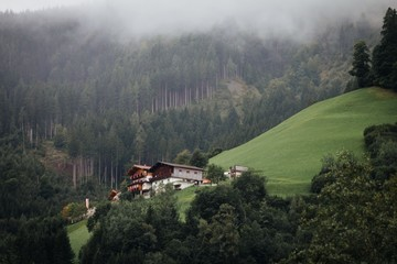 Green forest fog and house in mountains