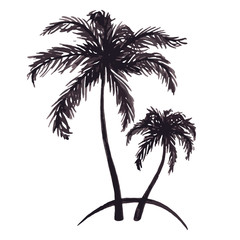 Monochrome two tropical palm tree sea ocean beach hand drawn sketch vector