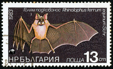 Ukraine - circa 2017: A postage stamp printed in Bulgaria shows drawing Bat Greater Horse-shoe Bat, Rhinolophus ferrum equinum. Series: Flora and fauna. Circa 1983.