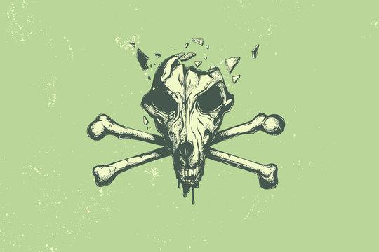 Dog skull and crossbones vector illustration.