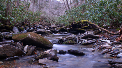 Small River with Moss Covered Stones in the Deep Woods of the Great Smokey Mountains National Park.
