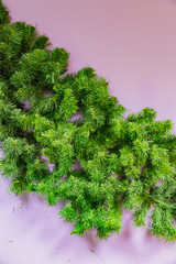 Synthetic branch of a coniferous tree on a background of a bright wall