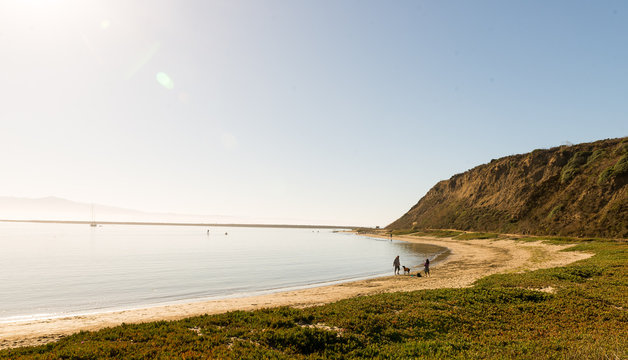 Mavericks beach at Half moon bay, California