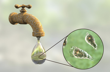 Brain-eating amoeba awareness concept. 3D illustration showing potential way of aquiring infection during ritual nasal rinsing. Trophozites of Naegleria fowleri can be present in dirty tap water