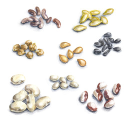 Set of Seeds Isolated