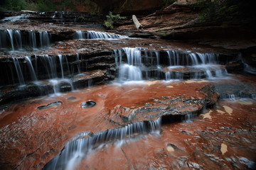 Tuinposter Bos rivier Archangel Falls on the way to the Subway Canyon in Zion National Park, Utah USA