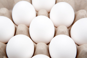 Commercial eggs in a carton on a white background