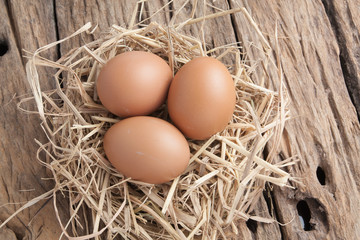 egg in hay nest on old wooden