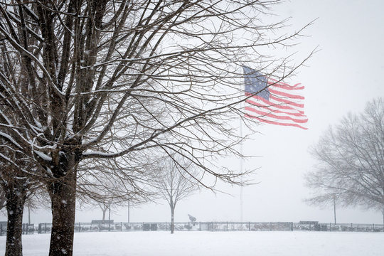 American Flag Blowing in the Snow