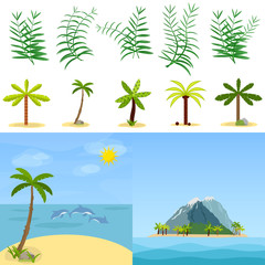 Palm trees, palm leaves, tropics. Tropical island in the ocean.