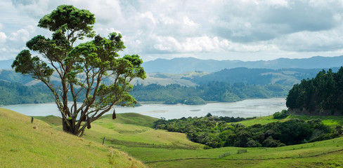 New Zealand, Manaia Road Lookout