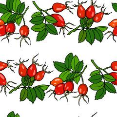 Dog rose pattern