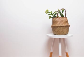 Minimalistic interior decor with plant in straw basket