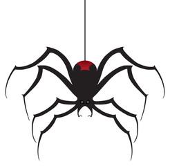 A black widow spider is descending using it's silk thread