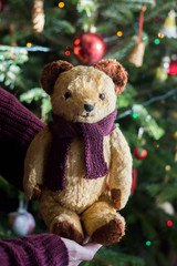 Little sweet teddy bear with knitted scarf under the christmas tree