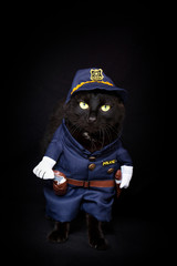 Black cat dressed as a police officer against a dark background