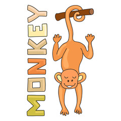 Funny monkey. Cartoon and vector isolated character. Template for style design.