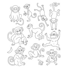 Vector funny monkeys. Vector illustration for your cute design.