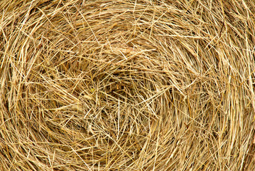 Abstract background of a tightly packed roll of hay.
