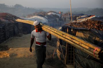 A Rohingya refugee carries a bamboo tree in the early morning at the Burma Para refugee camp near Cox's Bazar