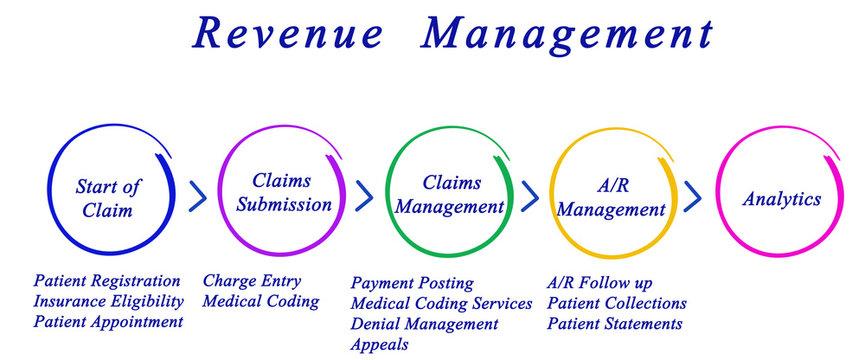 Revenue  Management Process