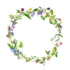 watercolor wreath flowers and plants