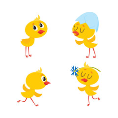 vector cartoon cute baby chicken characters set. Yellow small funny newborn chicks hatching, standing with shell at head, playing with flower, running. Flat isolated illustration on a white background