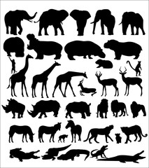 Set of African animals on white background