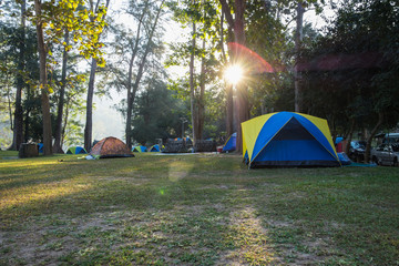 Canvas Prints Camping Camping tent in the lawn with sunlight morning of forest ,In national park