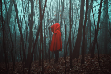 Mysterious figure in dead forest