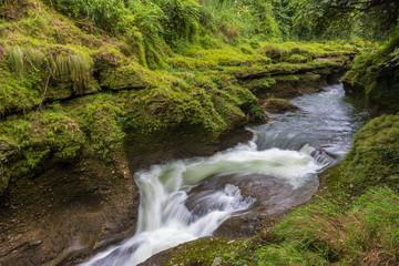 Davis Falls is a waterfall located at Pokhara in Kaski District.