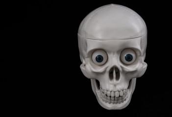 skeleton, human skull on a black background. close-up