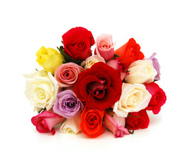 Colorful roses, beautiful flower bouquet on white background
