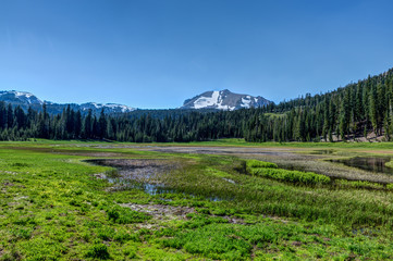 Panoramic Kings Creek flooded Meadow near Lassen Peak Mountain in Lassen Volcanic Park