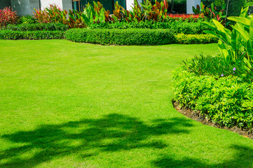 Wall Murals Green Landscape formal, front yard is beautifully designed garden.