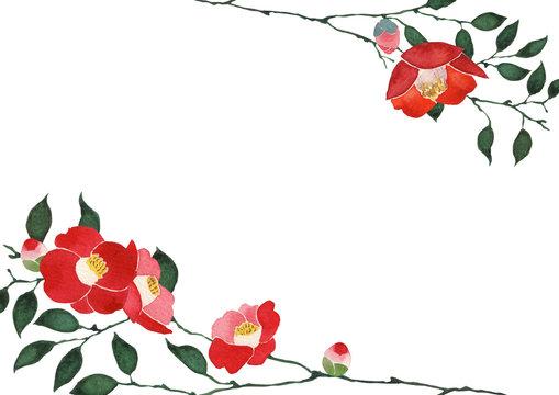 椿 背景 フレーム 水彩 イラスト