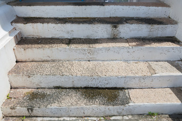 Cement stairs in the garden