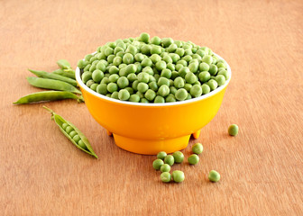 Peas, fresh and organic, in a bowl and in the background are pea pods.