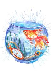 aquarium with a goldfish