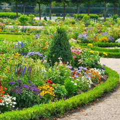 Lush flower beds in the summer garden.