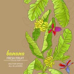 babana vector background
