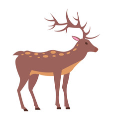 Male Deer View from Left Isolated Illustration