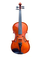 Violin on white background. 
